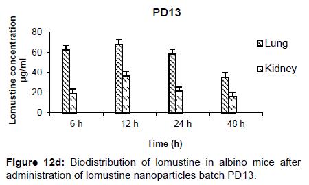 nanomedicine-nanotechnology-biodistribution-batch-pd13