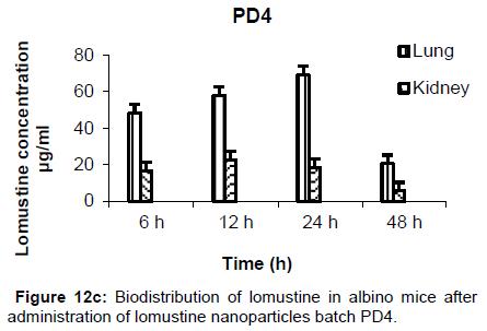 nanomedicine-nanotechnology-biodistribution-batch-pd4