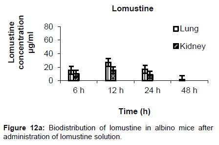 nanomedicine-nanotechnology-biodistribution-lomustine