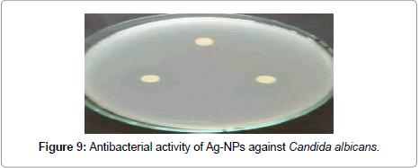 nanomedicine-nanotechnology-candida-albicans