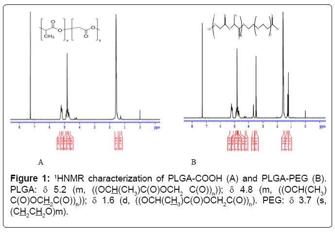 nanomedicine-nanotechnology-characterization