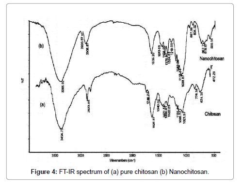 nanomedicine-nanotechnology-chitosan