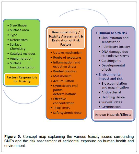 nanomedicine-nanotechnology-concept-explaining-toxicity