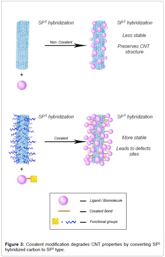 nanomedicine-nanotechnology-covalent-modification