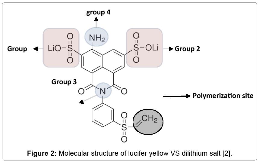 nanomedicine-nanotechnology-dilithium