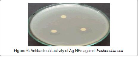 nanomedicine-nanotechnology-escherichia-coli