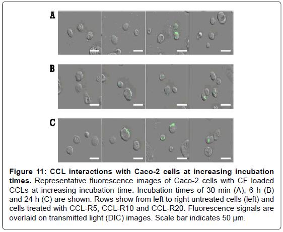 nanomedicine-nanotechnology-fluorescence-incubation-signals