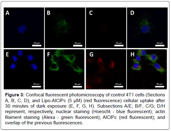 nanomedicine-nanotechnology-fluorescent-photomicroscopy-control