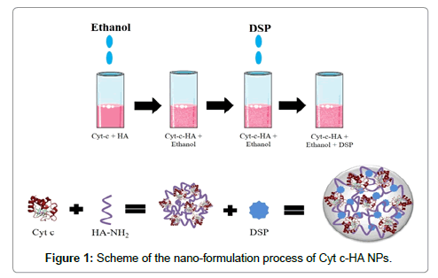 nanomedicine-nanotechnology-formulation