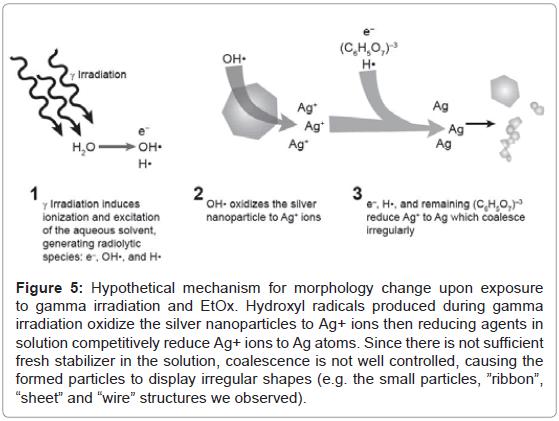 nanomedicine-nanotechnology-hypothetical-mechanism-morphology