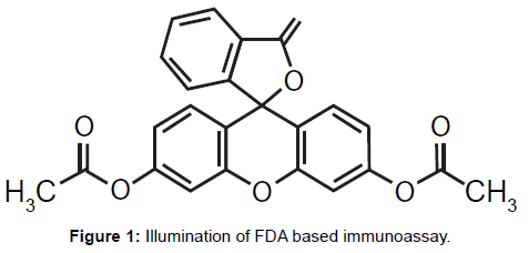 nanomedicine-nanotechnology-illumination-immunoassay