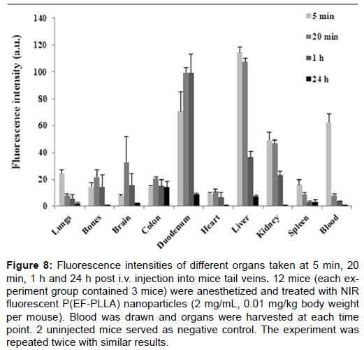 nanomedicine-nanotechnology-intensities-organs-injection