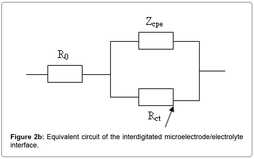 nanomedicine-nanotechnology-interdigitated