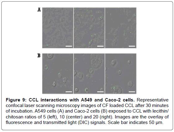 nanomedicine-nanotechnology-laser-scanning-microscopy