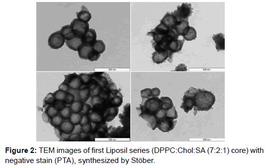 nanomedicine-nanotechnology-liposil-negative-stain