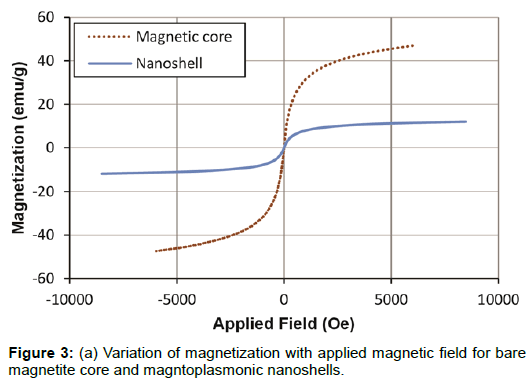 nanomedicine-nanotechnology-magnetization-magnetization-field