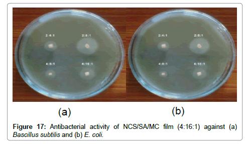 nanomedicine-nanotechnology-micrograph-subtilis