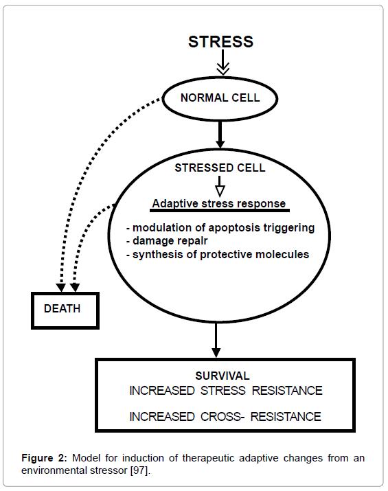 nanomedicine-nanotechnology-model-induction-therapeutic