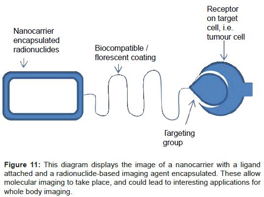 nanomedicine-nanotechnology-nanocarrier-ligand-radionuclide