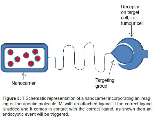 nanomedicine-nanotechnology-nanocarrier-therapeutic-molecule