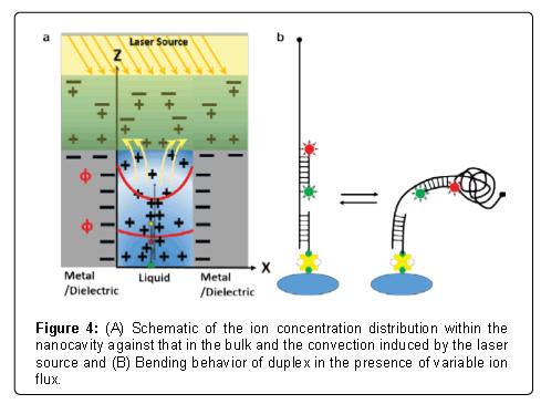 nanomedicine-nanotechnology-nanocavity-bulk-convection