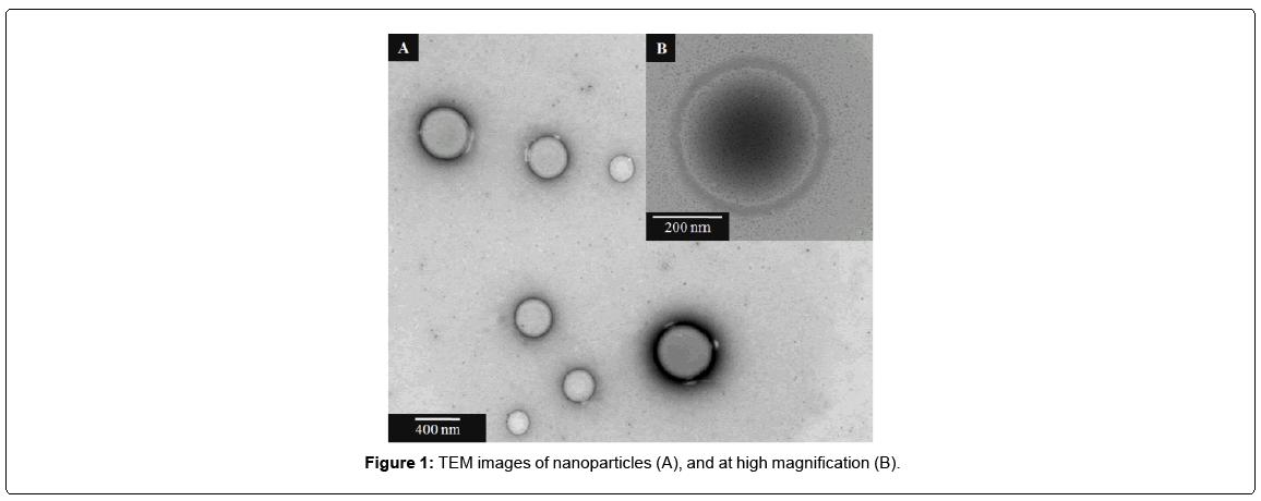 nanomedicine-nanotechnology-nanoparticles