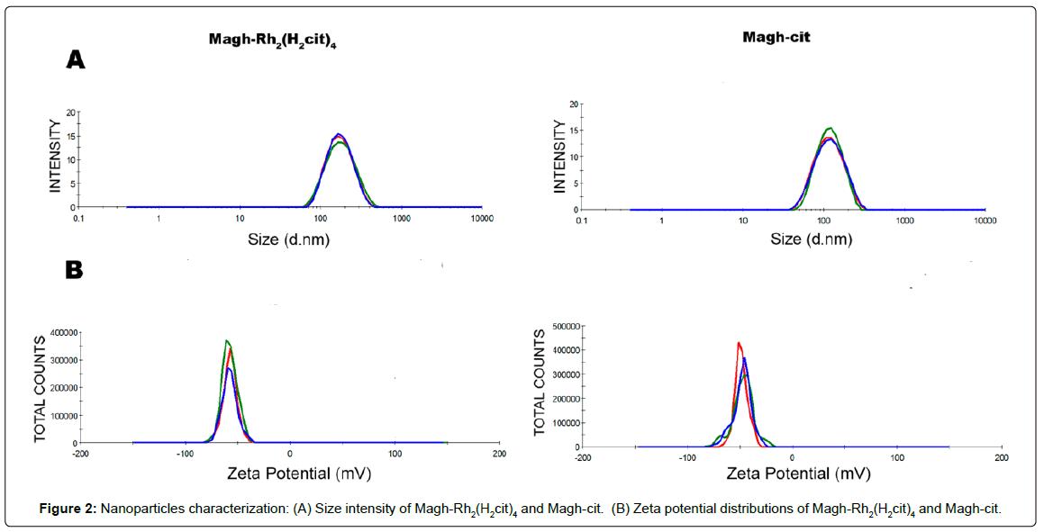 nanomedicine-nanotechnology-nanoparticles-characterization