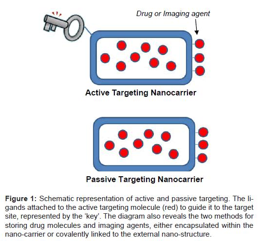 nanomedicine-nanotechnology-passive-molecule-covalently
