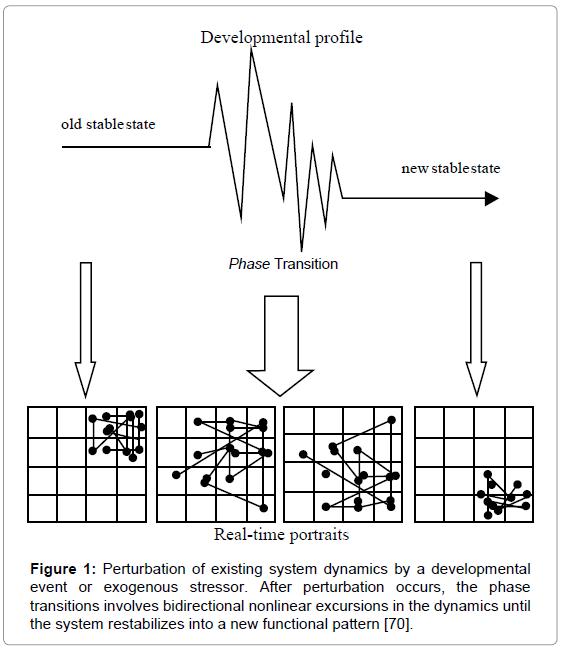 nanomedicine-nanotechnology-perturbation-existing-system