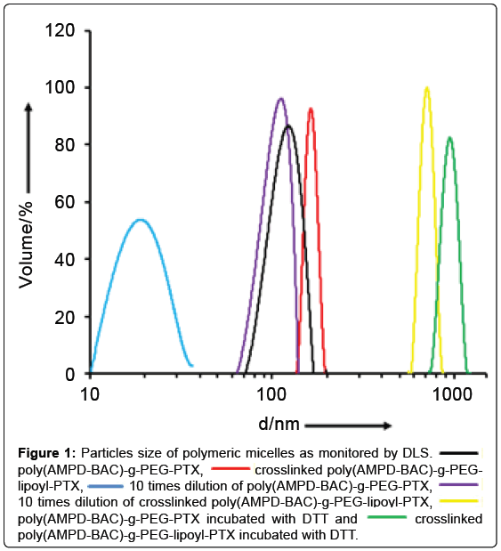 nanomedicine-nanotechnology-polymeric-micelles-crosslinked