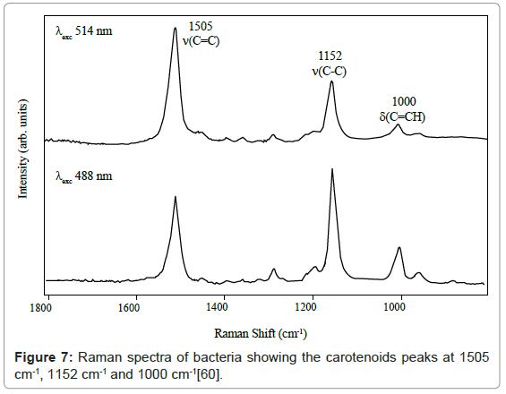 nanomedicine-nanotechnology-raman-spectra-carotenoids