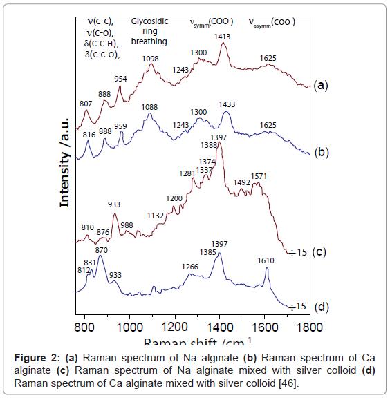 nanomedicine-nanotechnology-raman-spectrum-alginate
