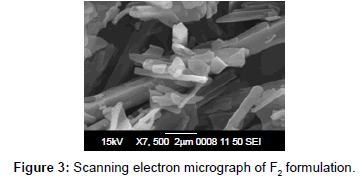nanomedicine-nanotechnology-scanning-electron-f2-formulation