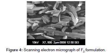 nanomedicine-nanotechnology-scanning-electron-f3-formulation