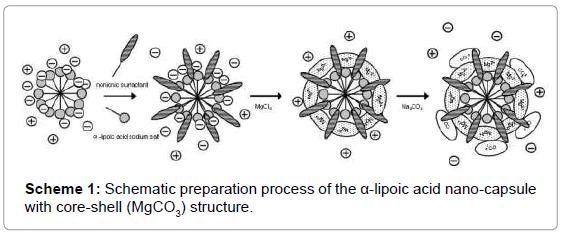 nanomedicine-nanotechnology-schematic-preparation-process