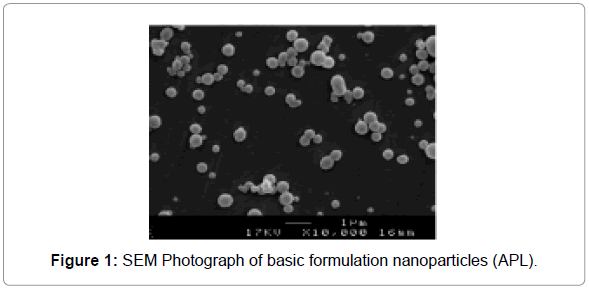 nanomedicine-nanotechnology-sem-photograph-formulation