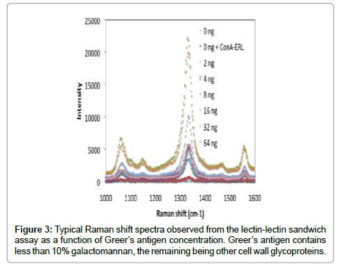 nanomedicine-nanotechnology-spectra