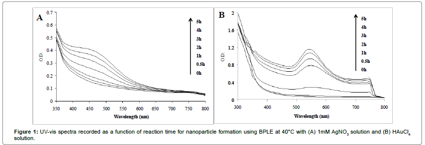 anomedicine-nanotechnology-spectra-function-time-nanoparticle-solution