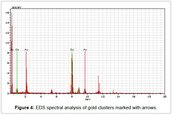 nanomedicine-nanotechnology-spectral-gold-clusters