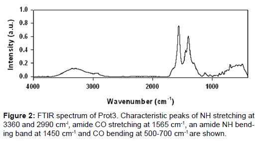 nanomedicine-nanotechnology-spectrum-stretching-amide