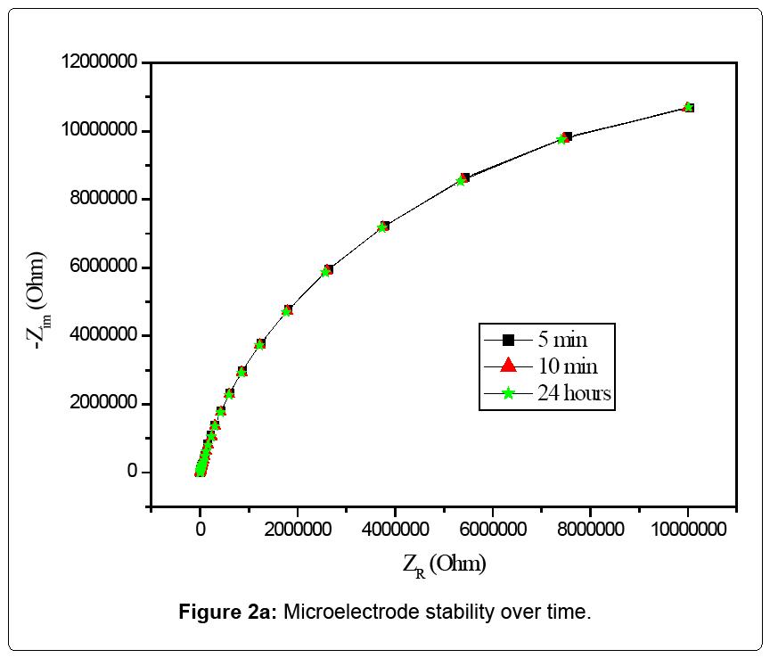 nanomedicine-nanotechnology-stability