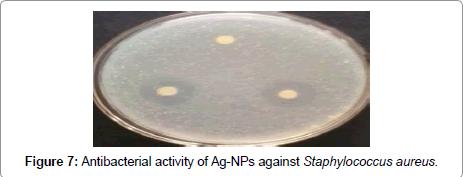 nanomedicine-nanotechnology-staphylococcus-aureus
