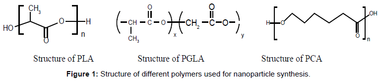 nanomedicine-nanotechnology-structure-different-polymers
