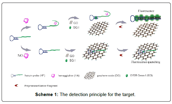 nanomedicine-nanotechnology-the-detection-principle