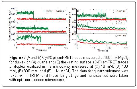 nanomedicine-nanotechnology-traces-duplex-grating