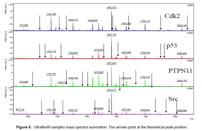 nanomedicine-nanotechnology-ultraflexiii-samples