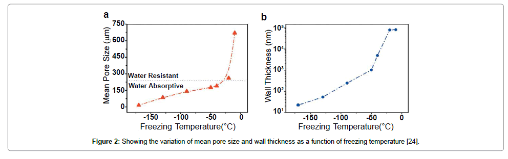 nanomedicine-nanotechnology-variation