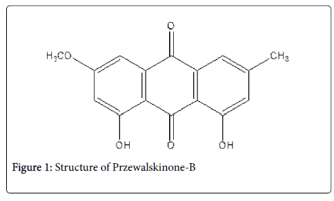 natural-products-chemistry-Przewalskinone
