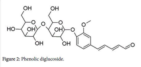 natural-products-chemistry-research-Phenolic-diglucoside