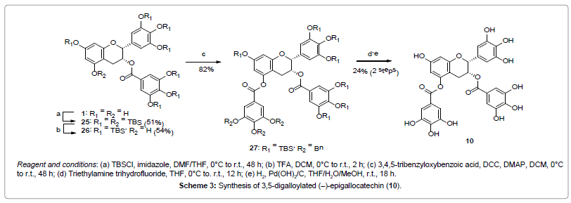 natural-products-chemistry-research-Synthesis-digalloylated-epigallocatechin